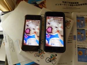 新旧のiPhoneを2台並べた写真