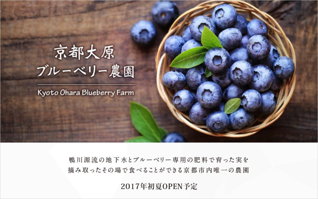 「京都大原ブルーベリー農園」のホームページのスクリーンショット