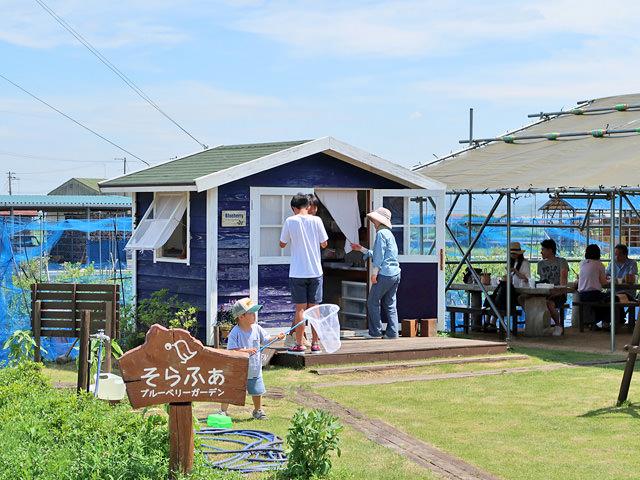 「そらふぁブルーベリーガーデン」内のテントと小屋の写真