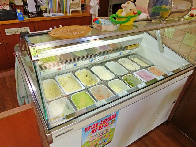 いろいろな種類のジェラート・アイスクリームが並んでいる様子