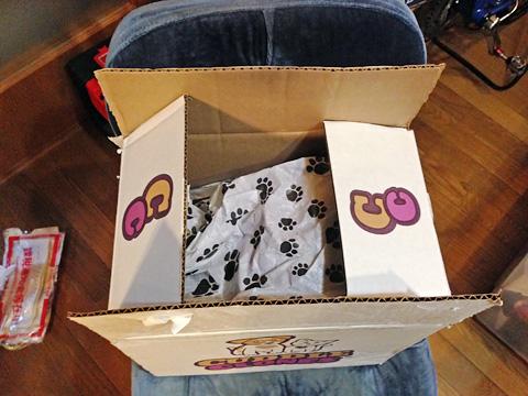 CuddleClones(カドルクローン)から届いた荷物の箱