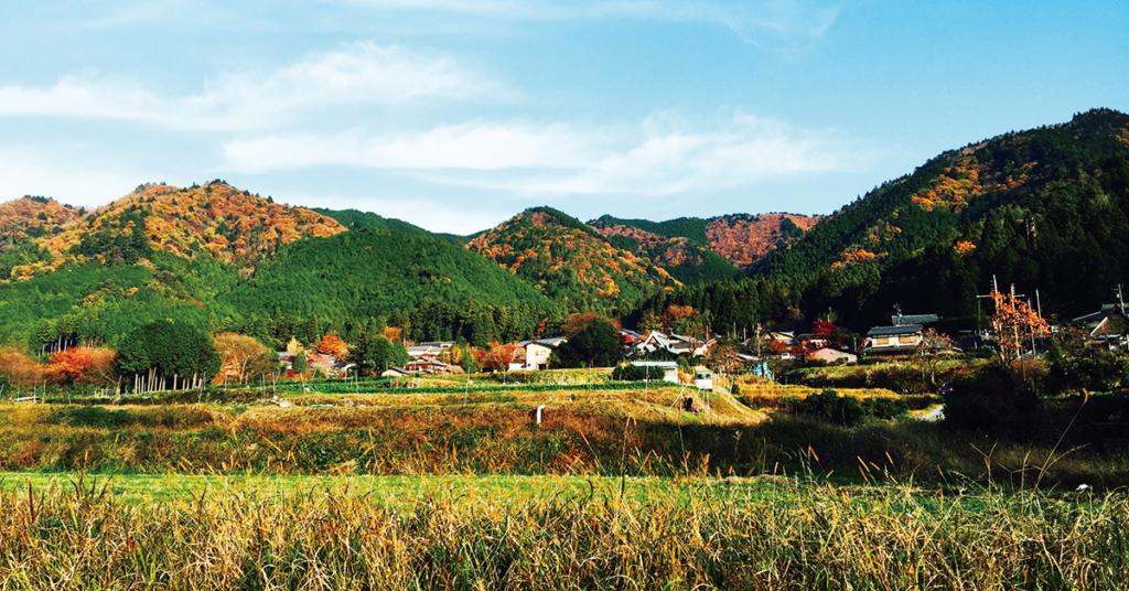 「京都大原ブルーベリー農園」がある大原の風景写真