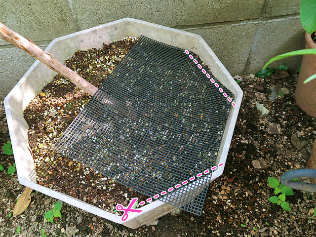鉢底ネットを植木鉢にあわせてカットすることを示すイラスト