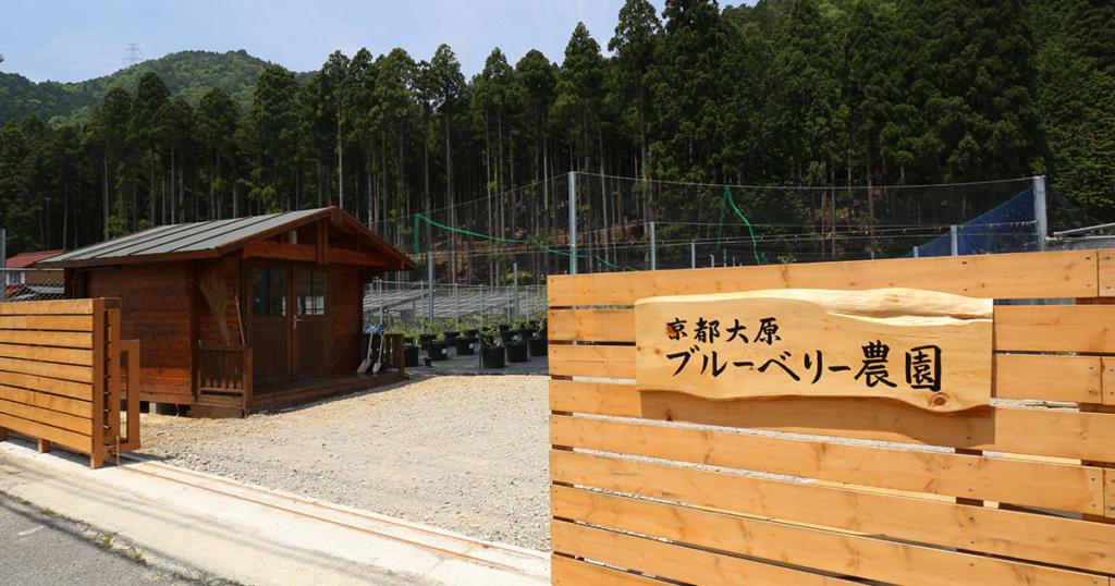 「京都大原ブルーベリー農園」の入り口付近の写真