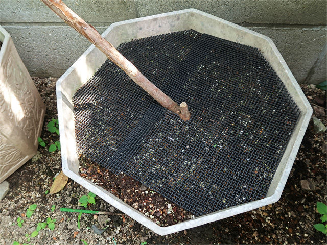 鉢底ネットで覆われた植木鉢の写真