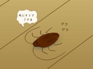 ゴキブリ駆除剤の「その日から効く」はマジ、置いたらすぐに効果があったよ