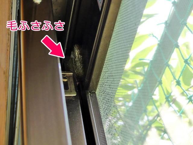 窓のサッシの隙間を「モヘアシール」のふさふさの毛が塞いでいる様子