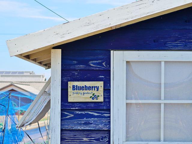 「そらふぁブルーベリーガーデン」内の小屋の写真